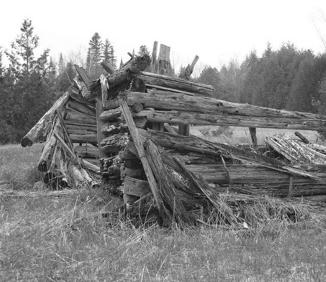 Farm Ruins #1