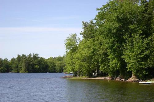 Shoreline #1