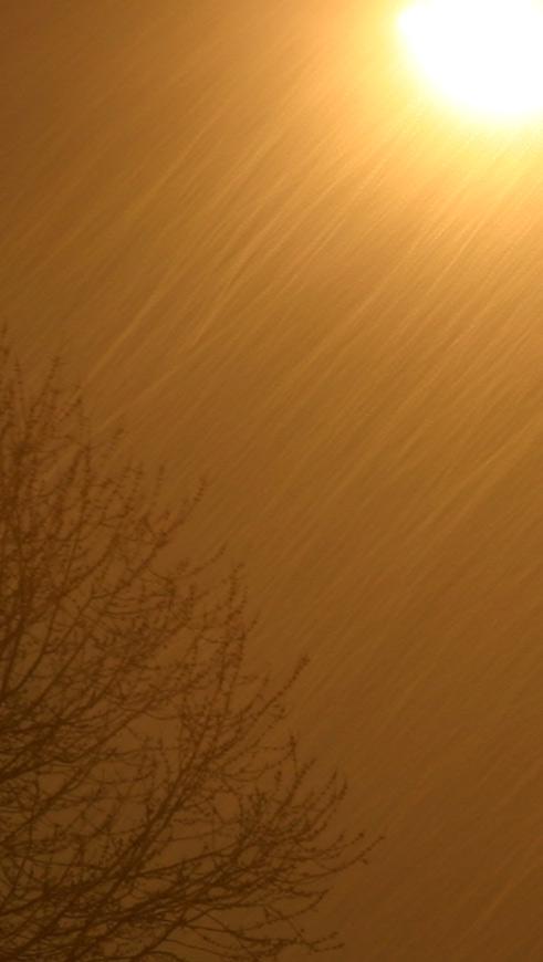 Night Snow #1